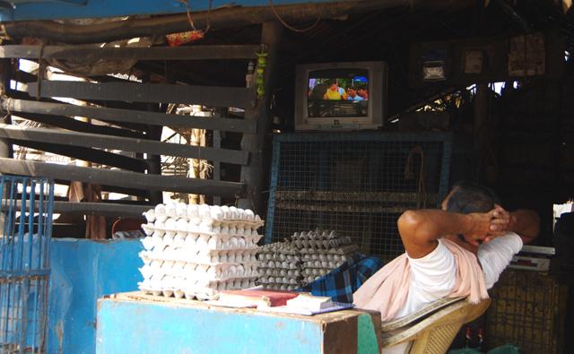 テレビ見る卵屋さん