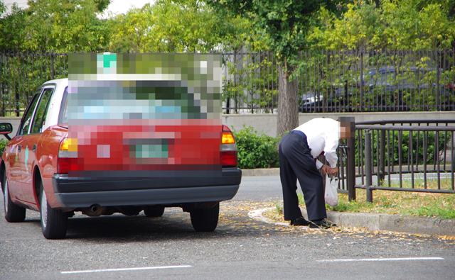 銀杏を拾うタクシーの運転手さん
