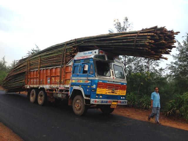 インド 運び過ぎ 竹 前
