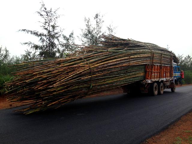インド 運び過ぎ トラック後ろ