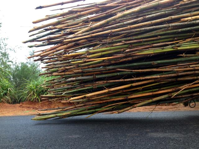 インド 運び過ぎ トラック 竹