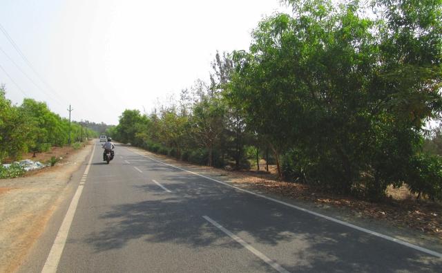 長ーく続く一本道。通学路にもなっています。