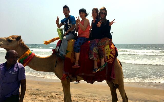 プリーの海でインドヨガ留学の同期とラクダに乗る