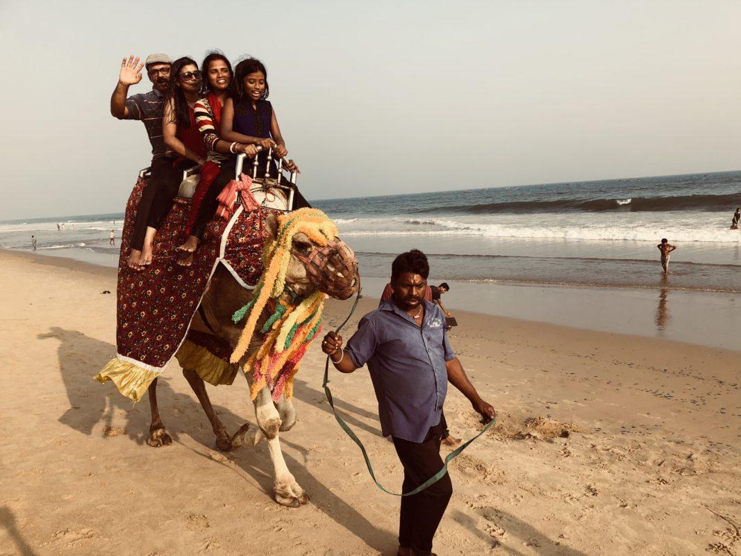 ラクダもビーチを歩くのがインド