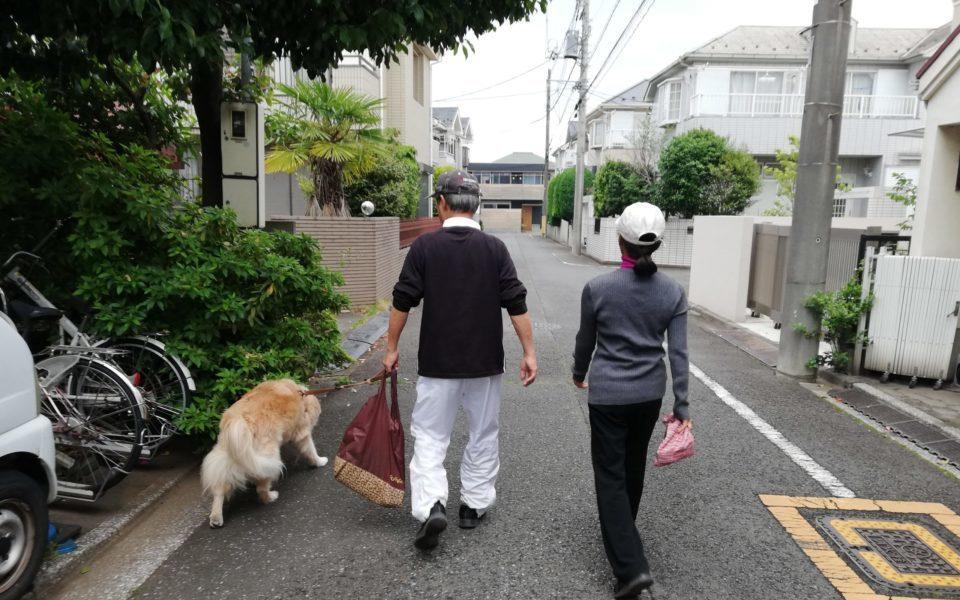 夫婦で犬の散歩をしている写真